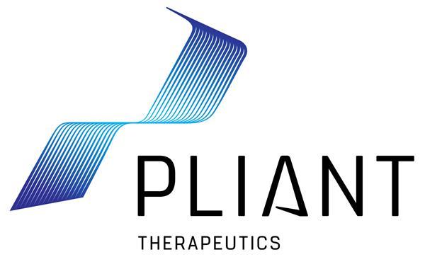 pliant_primarysubtitle_color_RGB.jpg