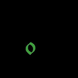 black logo transparent background[2].png