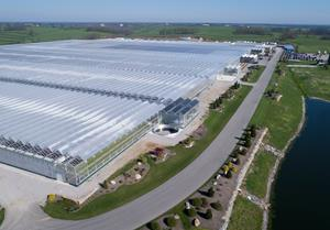 ColorPoint KY to Fully Convert 1 8 Million Square Foot