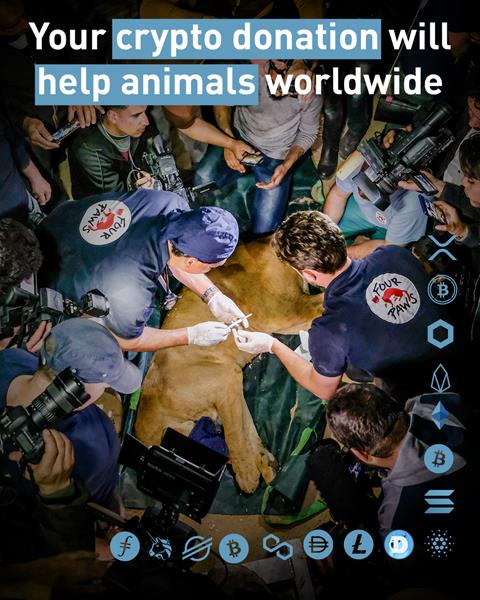 Your crypto donation will help animals worldwide!