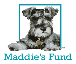 0_int_maddies-fund_square_color.png