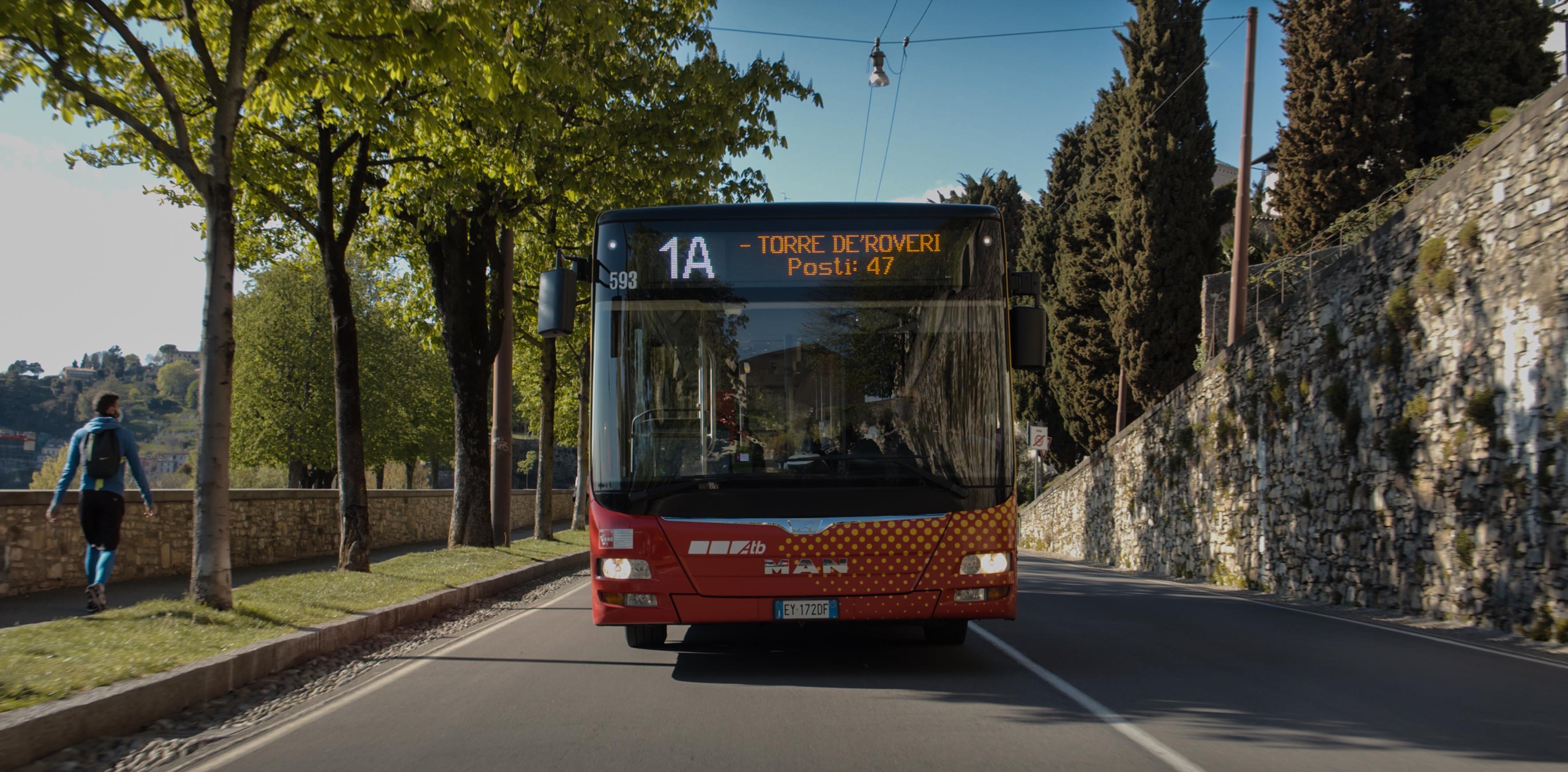 ATB Bergamo Bus: ATB Bergamo Bus