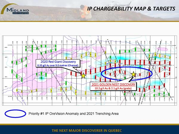 Figure 6 IP Chargeability Map&Targets