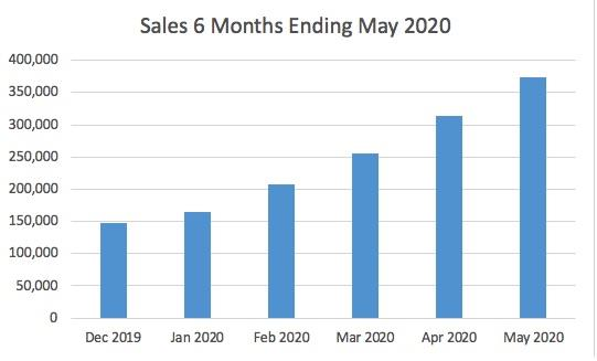 6 Months Sales Ended May 31, 2020