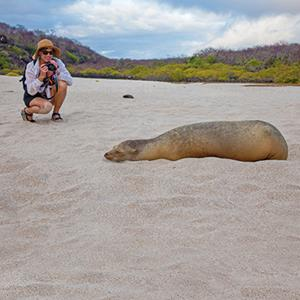 1_int_Galapagos-guest_and_sea_lion.jpg