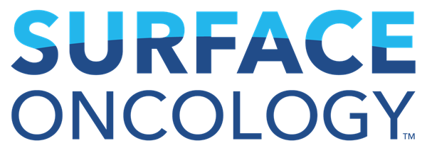 Surface Logo New Version-color.png