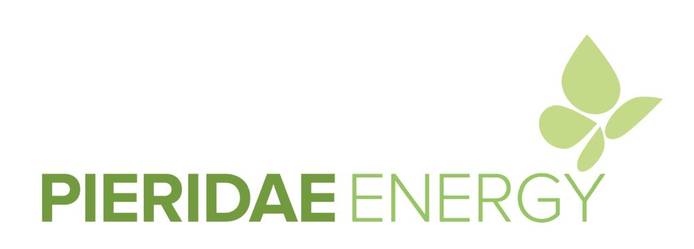Pieridae Energy Announces 2018 Year End Results, Progress Made on Goldboro LNG Project and Board Change