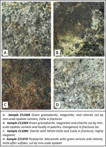 Mineralized Rock Samples