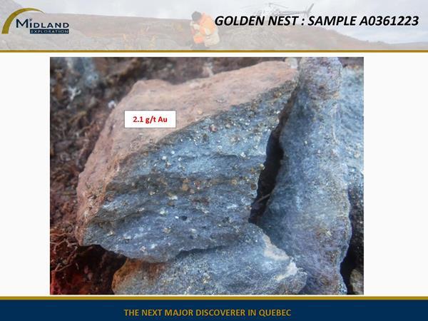 Figure 9 Golden Nest Sample A0361223