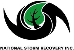 NSRI logo.png