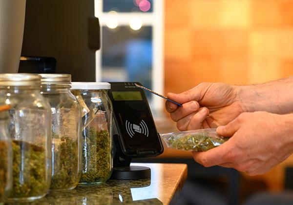 Interface offers cannabis operators innovative and cost-effective managed services to safeguard business, ramp up network connectivity, and comply with diverse federal, state, county, and city regulations