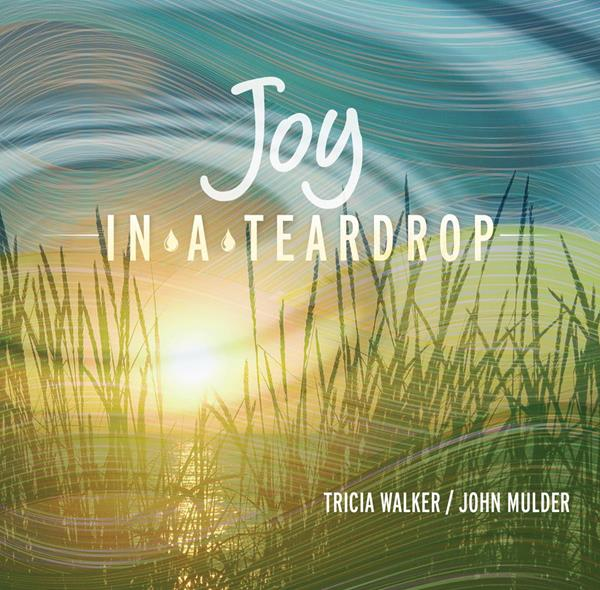 """Spurred on by the hospice community's positive response to Joy in a Teardrop, NHPCO is launching a  new program, """"Joy in a Teardrop: The Hospice Music Project,"""" which will result in a full album of songs that reflect the experience of hospice professionals in the work that they do"""