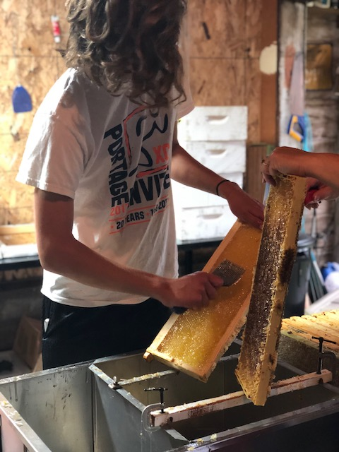 Springport FFA Honey Bee Cooperative