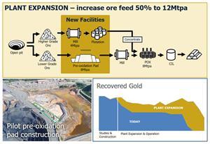 Pueblo Viejo Plant Expansion