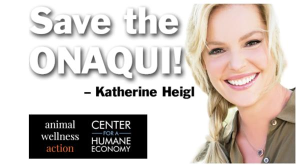 Actress Katherine Heigl joins Animal Wellness Action and the Center for a Humane Economy in the campaign to save the Onaqui wild horses in Utah. Visit: www.SaveTheOnaqui.org.