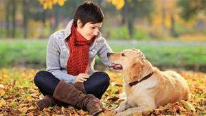 pet friendly drug rehabs