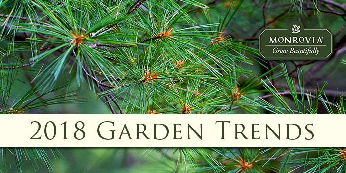 Monrovia 2018 Garden Trends