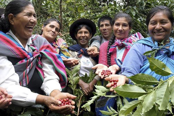 Women happy with the good coffee harvest