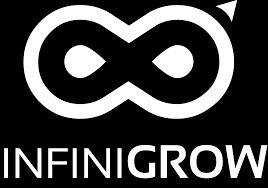 Ai-Driven Marketing Planning Solution Infinigrow Launches to Solve