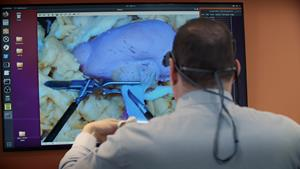 SIM ARTS' Flight Simulator for Surgery