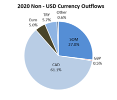 2020 Non - USD Currency Outflows