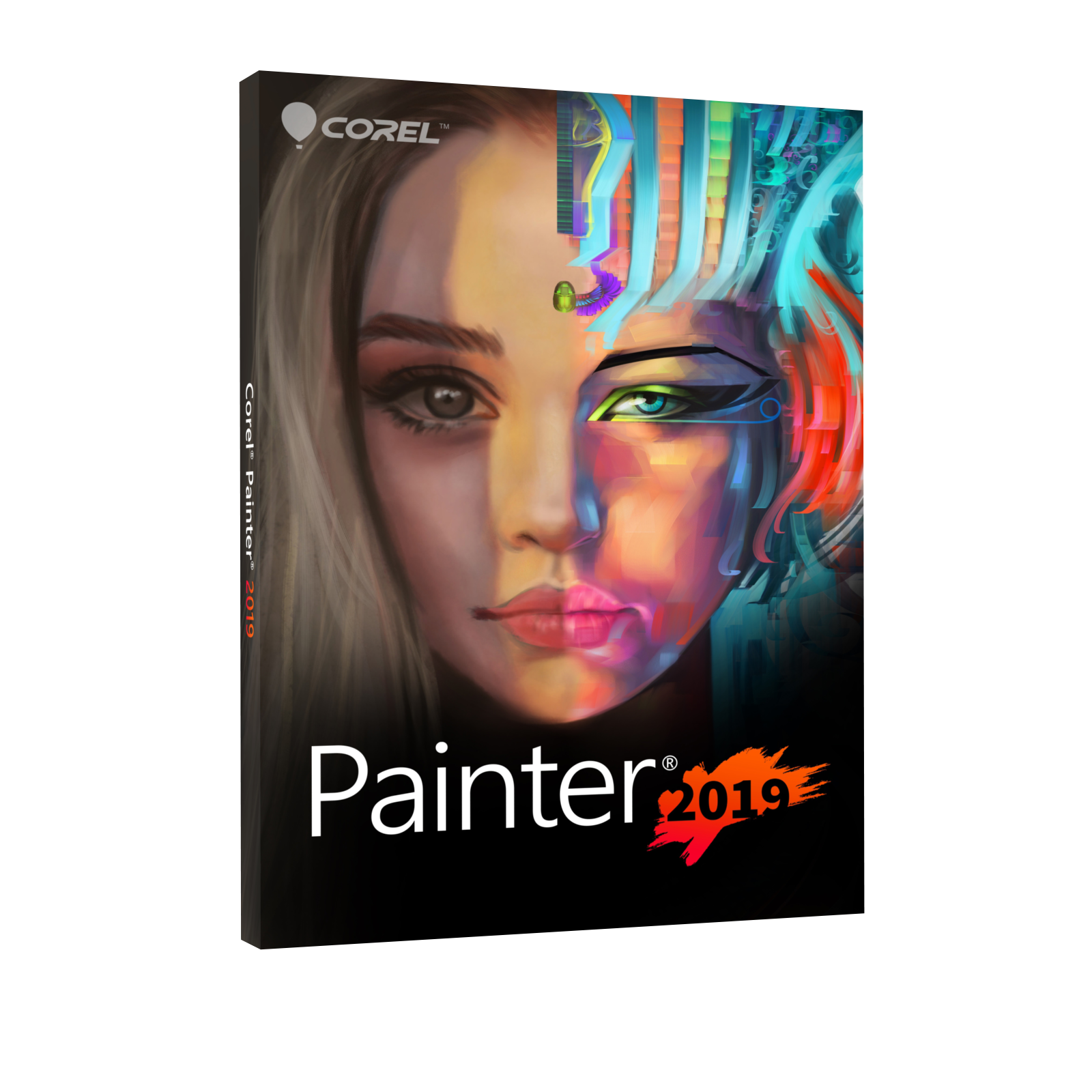 Painter 2019 - Box