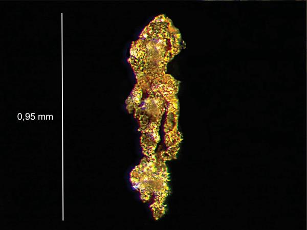 BGF Gold Particle