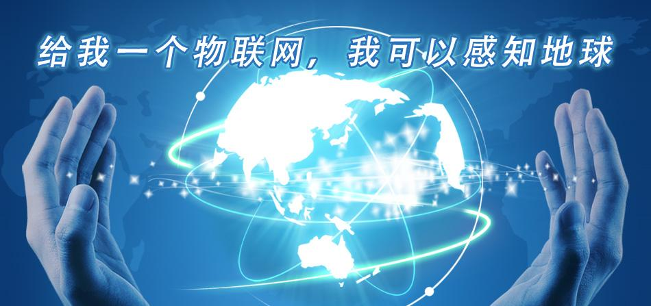 Feel the World with Internet of Things