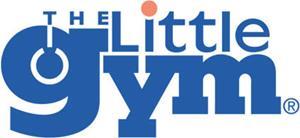 The Little Gym International.jpg