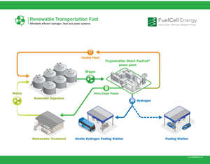 Renewable Hydrogen From Tri-Generation Fuel Cells Included