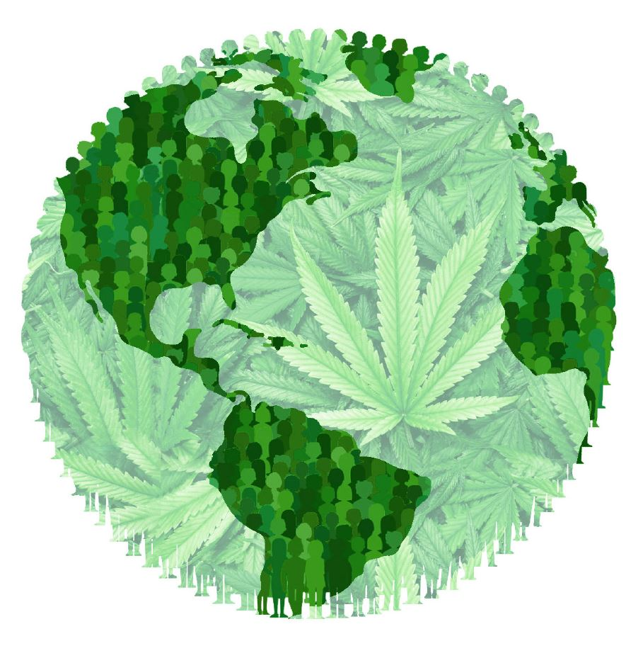 Global Cannabis Consumers