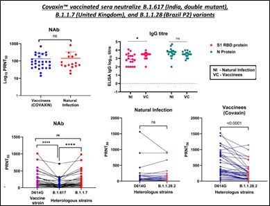 Ocugen: Neutralizing antibody response of COVAXIN vaccinated sera against SARS-CoV-2 strains