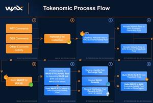 Tokenomic Process Flow