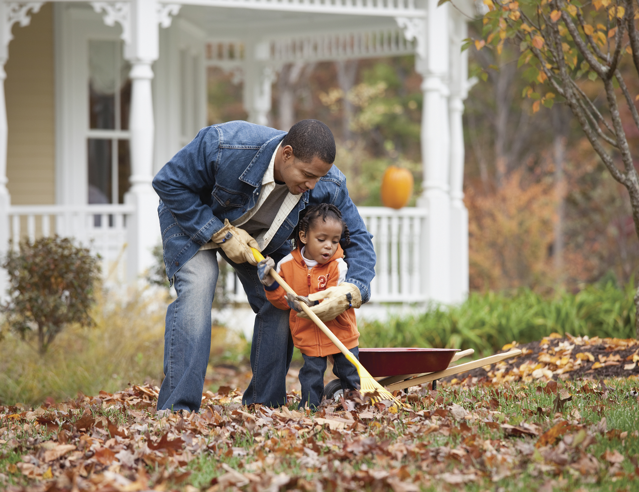 Prepare Lawn For Winter 6 tips to prepare your lawn for winter