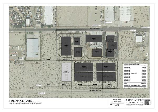 Pineapple Park master plan draft.jpg