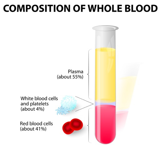 Whole Blood Composition