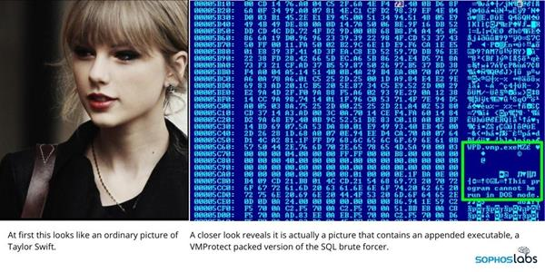 Image contains VMProtect packed version of the SQL brute forcer