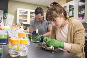 NREL researchers Chris Johnson and Rita Clare take biological samples from an old PET soda bottle that Johnson found during a cleanup drive around NREL. They are looking to isolate any microbes that may be breaking down the PET. Photo by Dennis Schroeder, NREL