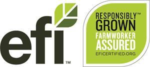 2_int_EFI_Logo+Label_fullcolor_Outline.jpg