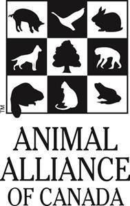 AA box logo blk.jpg