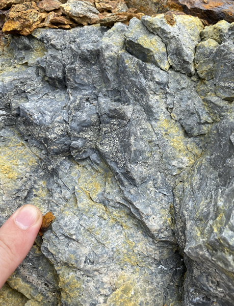 Photograph #2: Geological feature of interest, oxidized sulphide system in situ