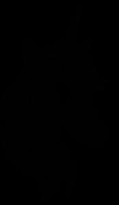 Blackyoonicorn Logo.png