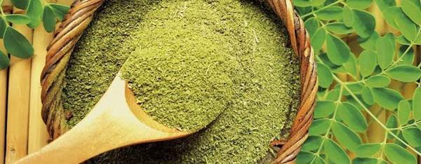 Best Moringa Supplements Review