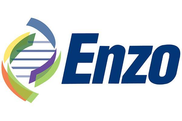 Enzo-logo-750-500.jpg