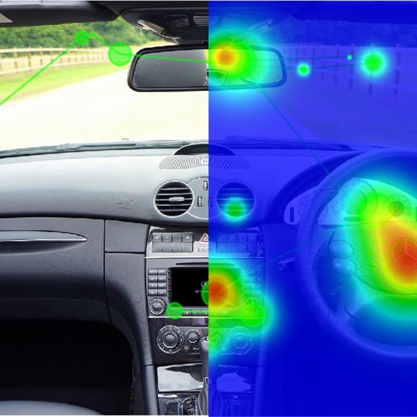 BIOPAC Eye Tracking Heat Map