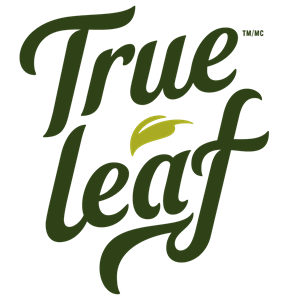 Trueleaf_Wordmark_Green_DarkGreen.png