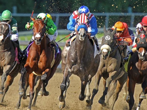 Two-year-old Uncle Sam (red & white stripes), under Rafael Bejarano, breaks his maiden at Santa Anita Park in Arcadia, CA.   Photo credit: Shutterstock: Royalty-free stock photo ID: 67917562