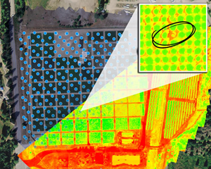 "Multispectral map of the Company's grounds in the Christina Lake region of British Columbia, showing how CLC's cannabis plants are currently monitored. Each dot represents an image capture point on the path of the Company's survey drone. The ""heatmap"" overlay provides insights about the health of a cluster of plants, with good overall health indicated by a bright shade of green. As shown in the upper-right inset, individual plants can be targeted on demand to allow potential areas of concern to be scrutinized."