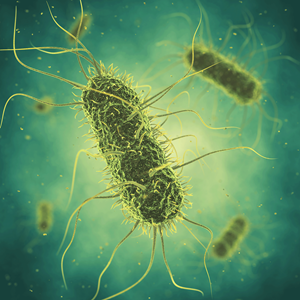 CERTUS™ to Bring In-House Salmonella Testing to Food Processing Plants