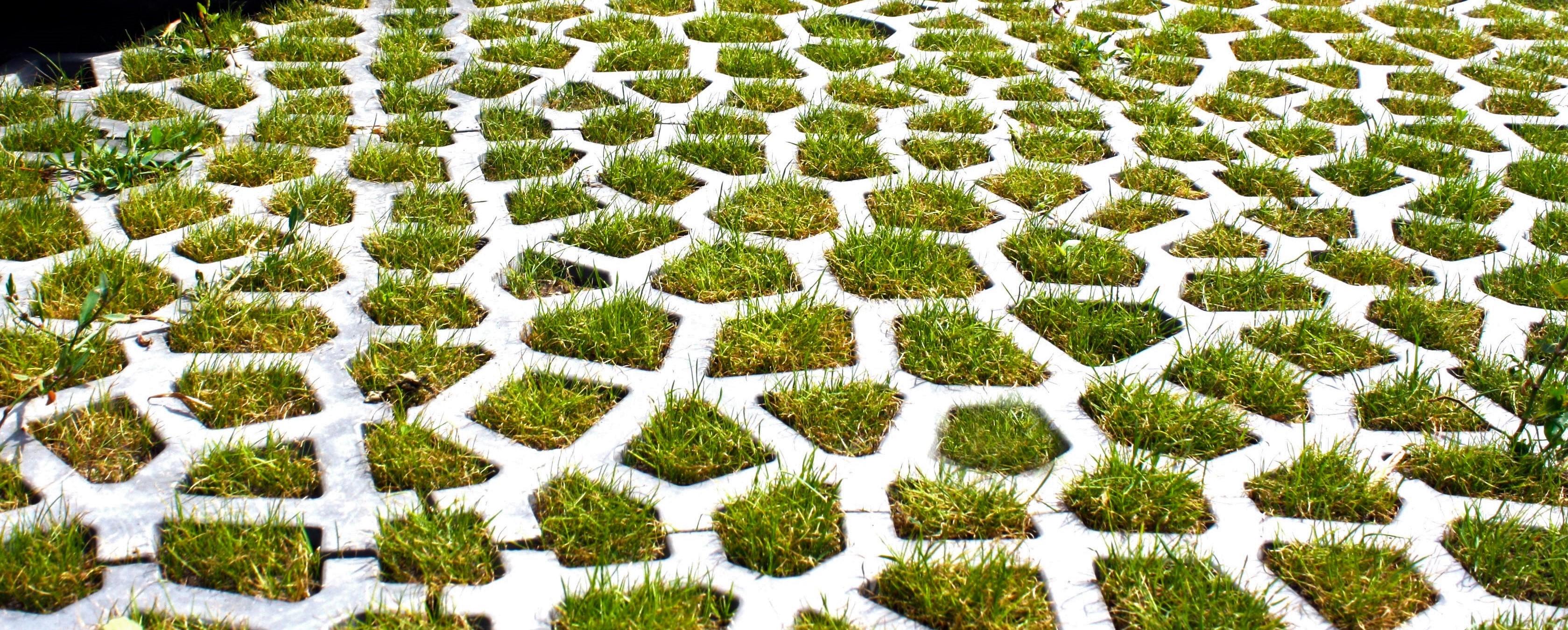 XMaterials Grass